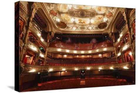 Interior of the Grand Opera House, Belfast, Northern Ireland, 2010-Peter Thompson-Stretched Canvas Print