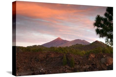 Mount Teide, Volcano on Tenerife, Canary Islands, 2007-Peter Thompson-Stretched Canvas Print