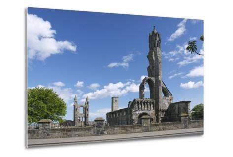 St Andrews Cathedral and St Rules Tower, Fife, Scotland, 2009-Peter Thompson-Metal Print