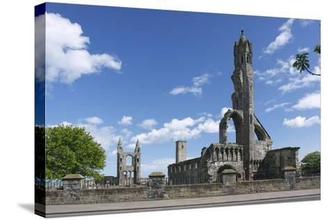 St Andrews Cathedral and St Rules Tower, Fife, Scotland, 2009-Peter Thompson-Stretched Canvas Print