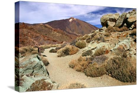 Mount Teide, Parque Nacional Del Teide, Tenerife, Canary Islands, 2007-Peter Thompson-Stretched Canvas Print