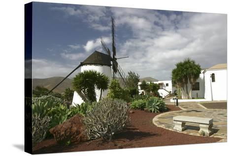 Windmill, Antigua, Fuerteventura, Canary Islands-Peter Thompson-Stretched Canvas Print