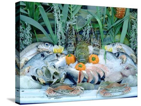 Fish Restaurant Display, Rethymnon, Crete, Greece-Peter Thompson-Stretched Canvas Print
