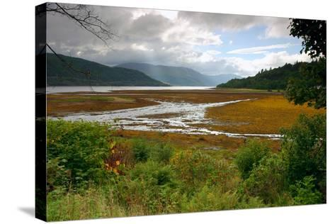 Loch Sunart from Strontian, Highland, Scotland-Peter Thompson-Stretched Canvas Print