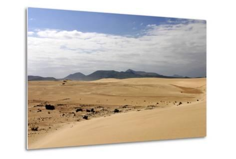 Sand Dunes, Corralejo, Fuerteventura, Canary Islands-Peter Thompson-Metal Print