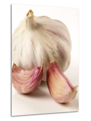 Garlic and Garlic Cloves- Joff Lee Studios-Metal Print