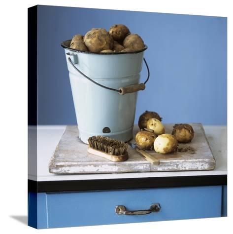 Organic Potatoes in Bucket and on Chopping Board; Brush; Knife-Michael Paul-Stretched Canvas Print