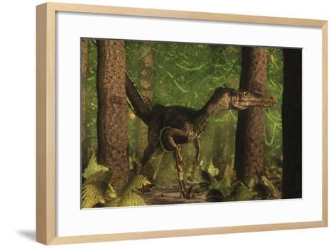 Velociraptor Dinosaur Stands Alert in an Araucaria Tree Forest-Stocktrek Images-Framed Art Print