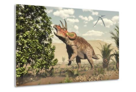 Triceratops Grazing on a Magnolia Tree-Stocktrek Images-Metal Print