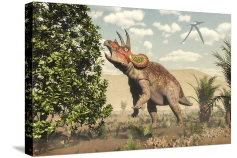 Triceratops Grazing on a Magnolia Tree-Stocktrek Images-Stretched Canvas Print