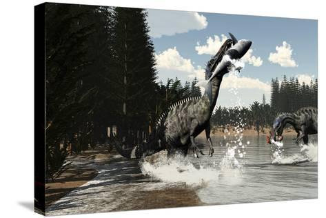 Two Suchomimus Dinosaurs Catch a Fish and Shark-Stocktrek Images-Stretched Canvas Print