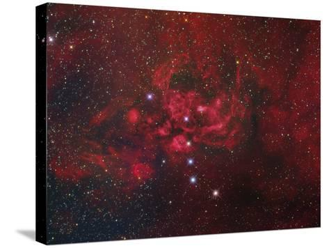 Ngc 6357, the Lobster Nebula in Scorpius-Stocktrek Images-Stretched Canvas Print