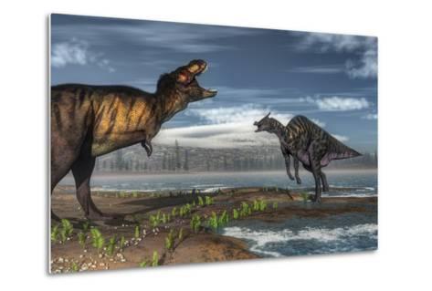 Battle Between Tyrannosaurus Rex and Saurolophus-Stocktrek Images-Metal Print
