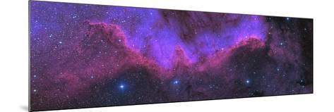 Cygnus Wall, Ngc 7000, the North American Nebula-Stocktrek Images-Mounted Photographic Print