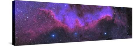 Cygnus Wall, Ngc 7000, the North American Nebula-Stocktrek Images-Stretched Canvas Print