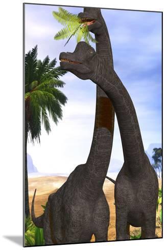 Brachiosaurus Dinosaurs Munch on Tropical Vegetation-Stocktrek Images-Mounted Art Print