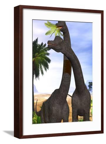 Brachiosaurus Dinosaurs Munch on Tropical Vegetation-Stocktrek Images-Framed Art Print