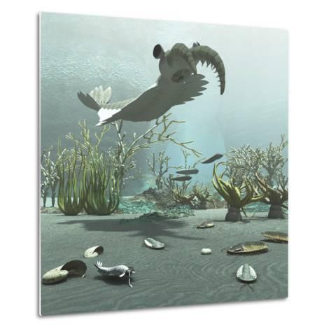 Animals and Floral Life from the Burgess Shale Formation of the Cambrian Period-Stocktrek Images-Metal Print