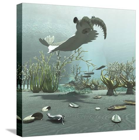 Animals and Floral Life from the Burgess Shale Formation of the Cambrian Period-Stocktrek Images-Stretched Canvas Print