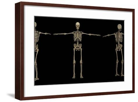 3D Rendering of Human Skeletal System at Different Angles-Stocktrek Images-Framed Art Print