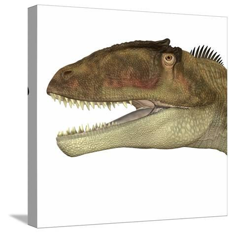 Carcharodontosaurus Dinosaur Head-Stocktrek Images-Stretched Canvas Print