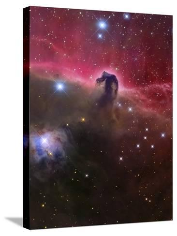 The Horsehead Nebula, Barnard 33 in the Orion Constellation-Stocktrek Images-Stretched Canvas Print