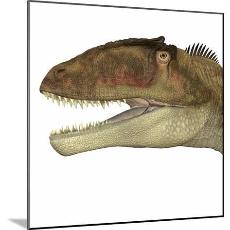 Carcharodontosaurus Dinosaur Head-Stocktrek Images-Mounted Art Print