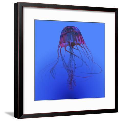 Red Jellyfish Illustration-Stocktrek Images-Framed Art Print