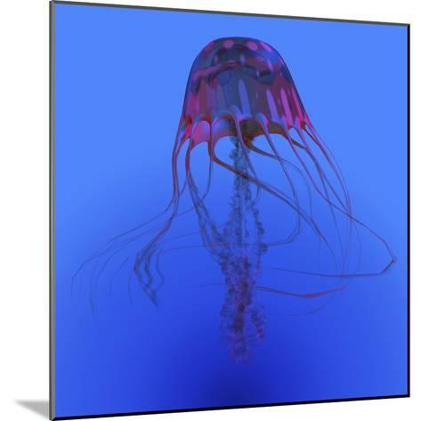 Red Jellyfish Illustration-Stocktrek Images-Mounted Art Print