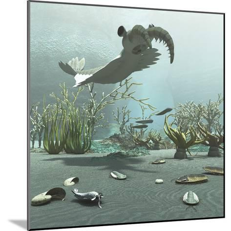 Animals and Floral Life from the Burgess Shale Formation of the Cambrian Period-Stocktrek Images-Mounted Art Print