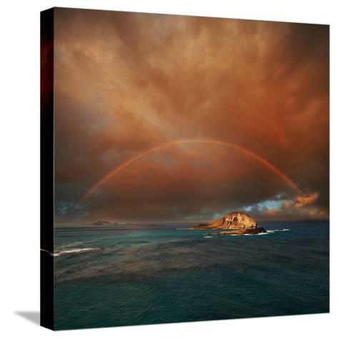 Hawaii-Galyna Andrushko-Stretched Canvas Print