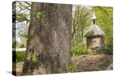 Pigeon House in Forest Scenery-YellowPaul-Stretched Canvas Print