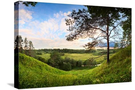 Landscape Panorama of Valley with a Lonely Pine-Aleksandr Matveev-Stretched Canvas Print