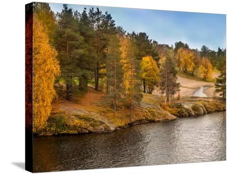 Autumn in Lapland-Roman Milert-Stretched Canvas Print