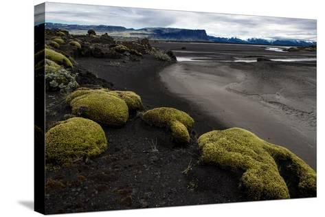 Tundra Moon Walk Iceland- contemart-Stretched Canvas Print