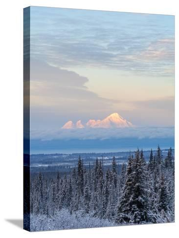 Mt Iliamna in Winter at Dawn-Latitude 59 LLP-Stretched Canvas Print