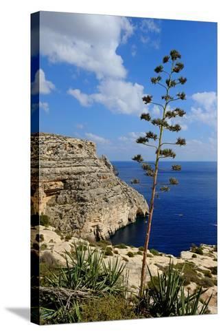 Blue Grotto Coast Malta-Diana Mower-Stretched Canvas Print