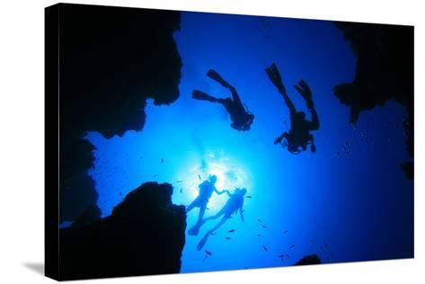Scuba Divers about to Descend into an Underwater Canyon-Rich Carey-Stretched Canvas Print