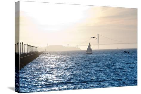 Alcatraz at Sunset-aspen rock-Stretched Canvas Print