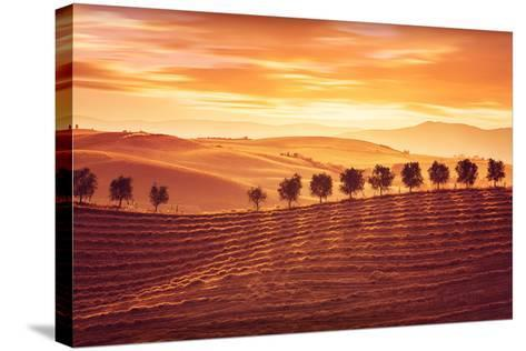 Beautiful Countryside Landscape, Amazing Orange Sunset over Golden Soil Hills, Beauty of Nature, Ag-Anna Omelchenko-Stretched Canvas Print