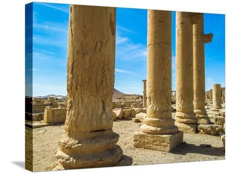 Columns of the Roman Ruins of Palmyra, Syria-siempreverde22-Stretched Canvas Print
