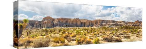 Red Rock Canyon State Park-garytog-Stretched Canvas Print