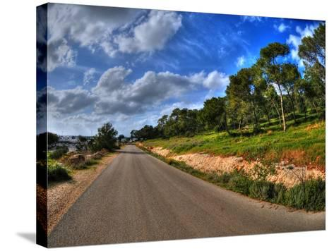 Road in a Field in Hof Hacarmel near Haifa, Israel- aharond-Stretched Canvas Print