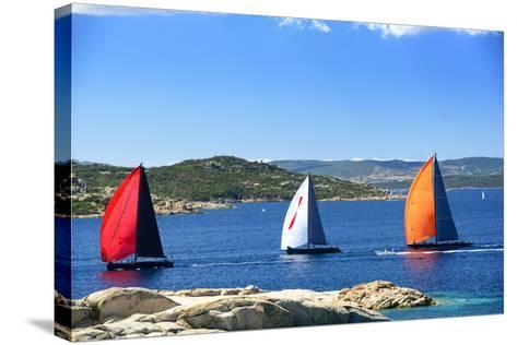 Sailboats Regatta Racing-stefano pellicciari-Stretched Canvas Print