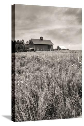 B&W of Farm Field and Barn.-gjphotography-Stretched Canvas Print