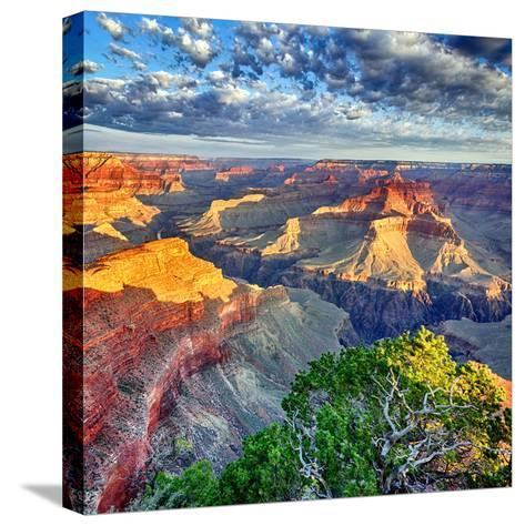 Morning Light at Grand Canyon-prochasson-Stretched Canvas Print