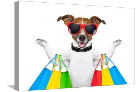 Shopping Dog-Javier Brosch-Stretched Canvas Print
