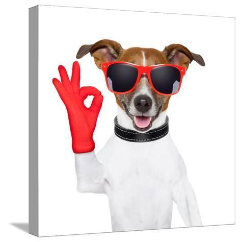 Ok Fingers Dog-Javier Brosch-Stretched Canvas Print