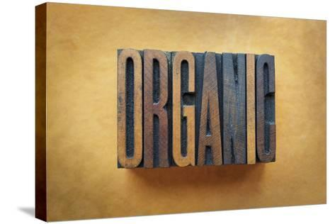 Organic-enterlinedesign-Stretched Canvas Print