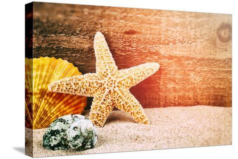 Sea Star and Shells-paulgrecaud-Stretched Canvas Print